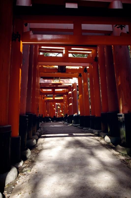 7 - les chemins de torii, Fushimi Inari, Kyoto