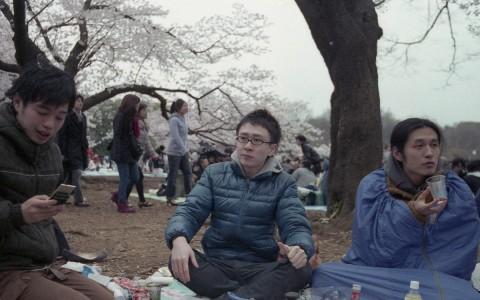Hanami à Yoyogi Park – les amis