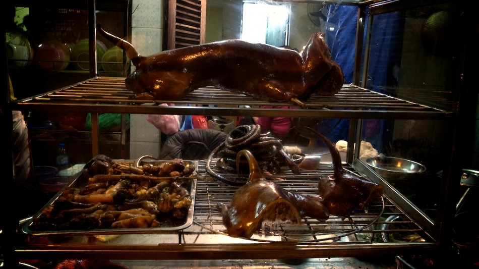 eating a dog meat meal in Hanoi, Vietnam